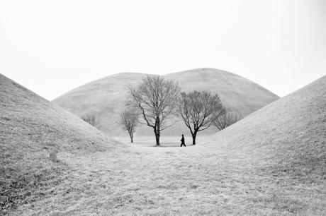 Studies on minimalism