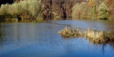 Le début du Lac de Schiffenen